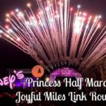 Disney's Princess Half Marathon Weekend 2017 Joyful Miles Race Recap Round Up